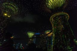 Gardens at the bay at night, Singapore