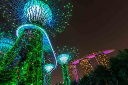 Gardens by the bay, Singapore Travel Guide